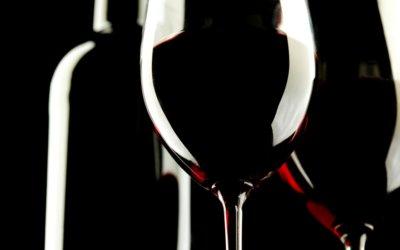 Venez participer à nos dégustations de vins