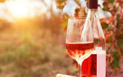 Wijndegustatie voor wijnliefhebbers